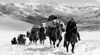 Location Management | Mongolia | Whistling Arrow